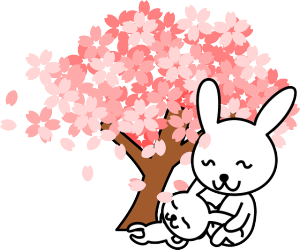 rabbits-154485_640