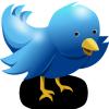 Twitter乗っ取り系のフィッシングに釣られました。